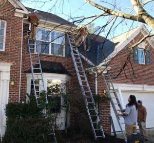 Best Painters In Chapel Hill North Carolina